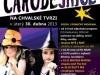 plakat-carodejnice_web-final