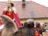 Král na velbloudovi