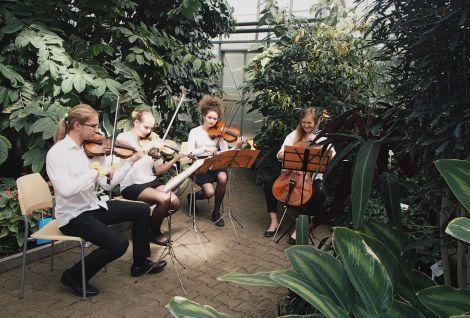 Narozeninový koncert - smyčcové kvarteto Rubio