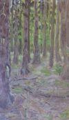 Krajina kreslená a malovaná - Dalibor Koloc
